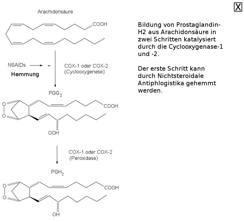 Kann ich Lansoprazol und Ibuprofen zusammen einnehmen?